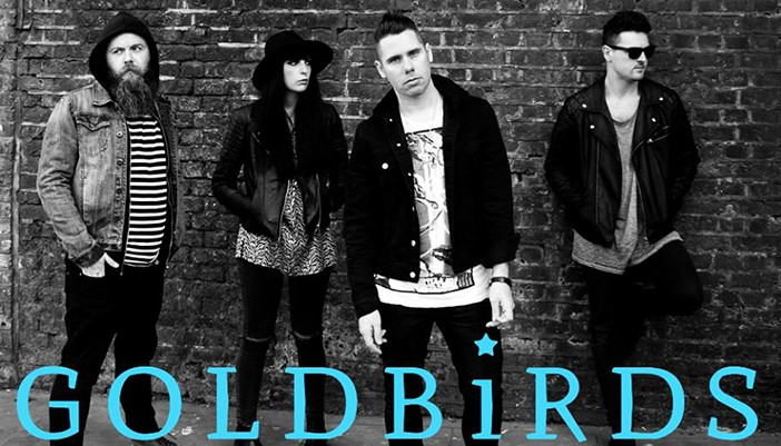 Artist Of The Week – Goldbirds